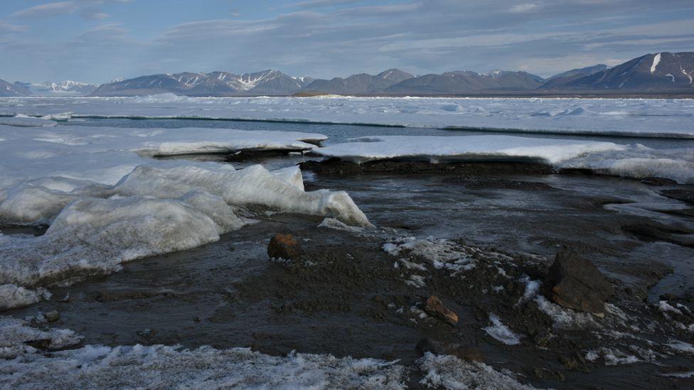 Greenland island is world's northernmost island – scientists