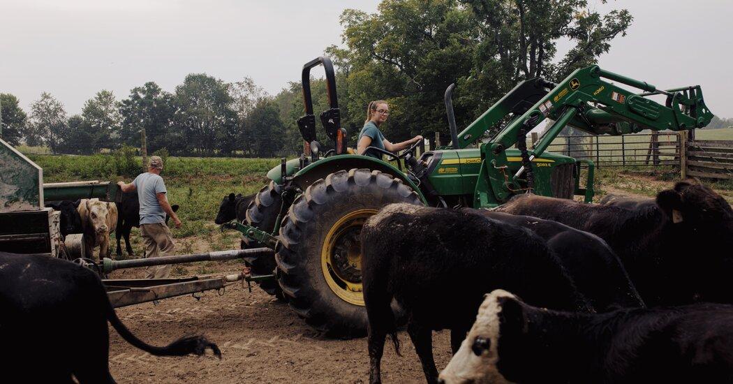 After 15 Years in Opera, Martha Prewitt Runs a Farm in Kentucky