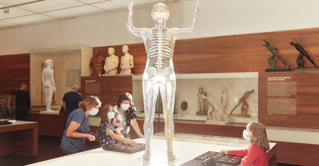 Pandemics Get Forgotten. But Not at This Museum.